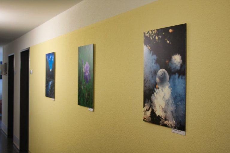 Bilderausstellung im Altersheim 08